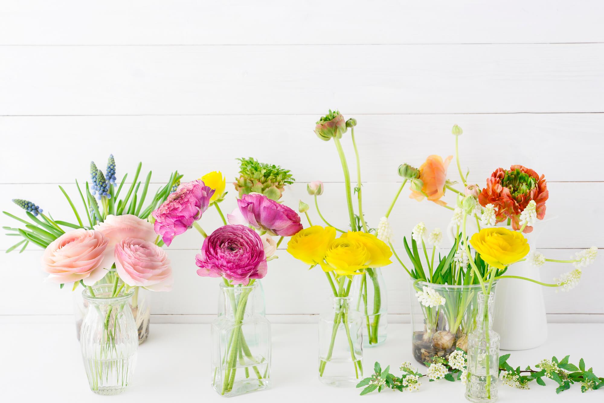 切り花の水揚げに!花を長持ちさせるエタノールの活用術