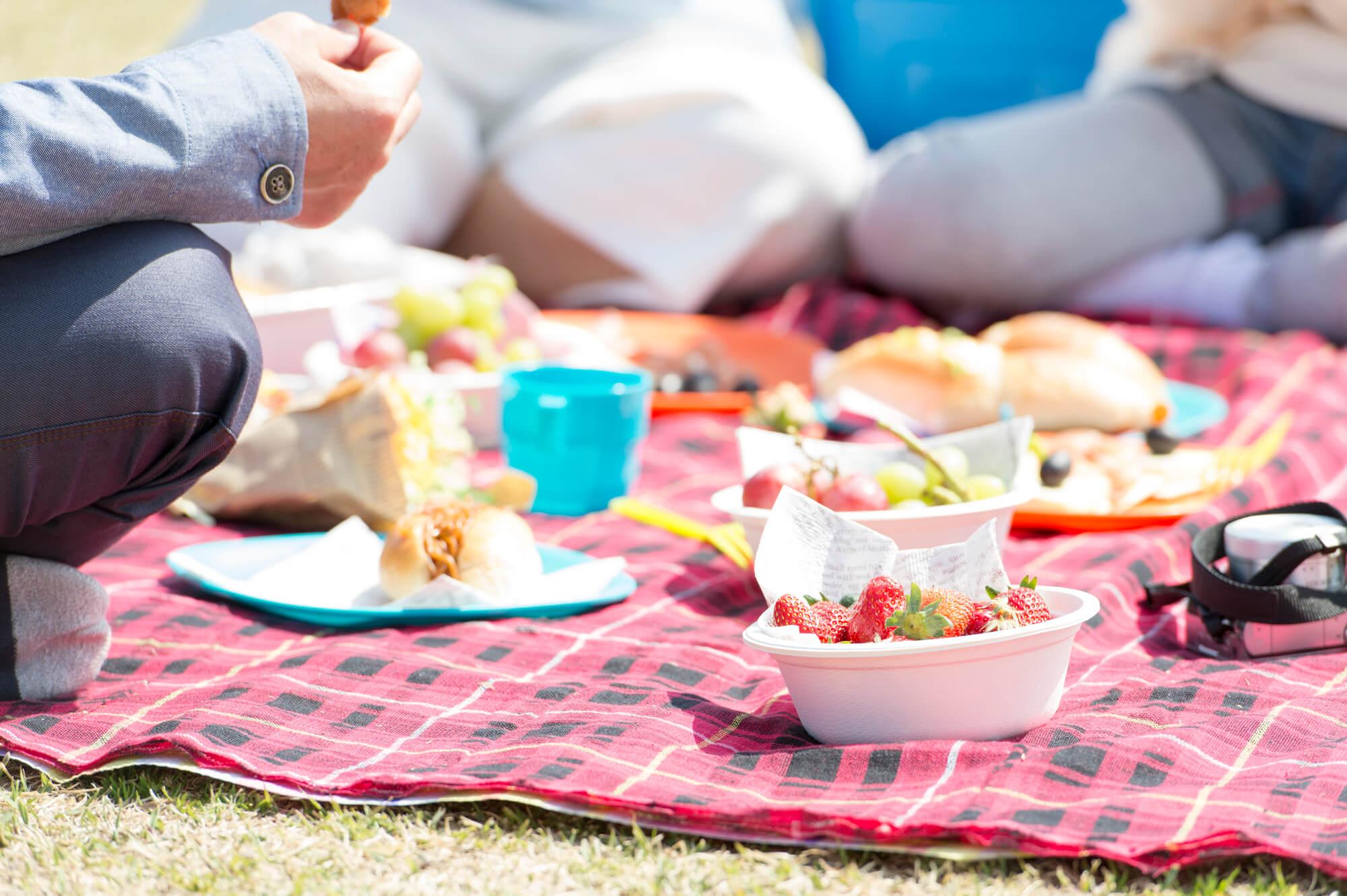 遠足やピクニックに!ハッカ油を使ったお手拭きシートで手軽に除菌