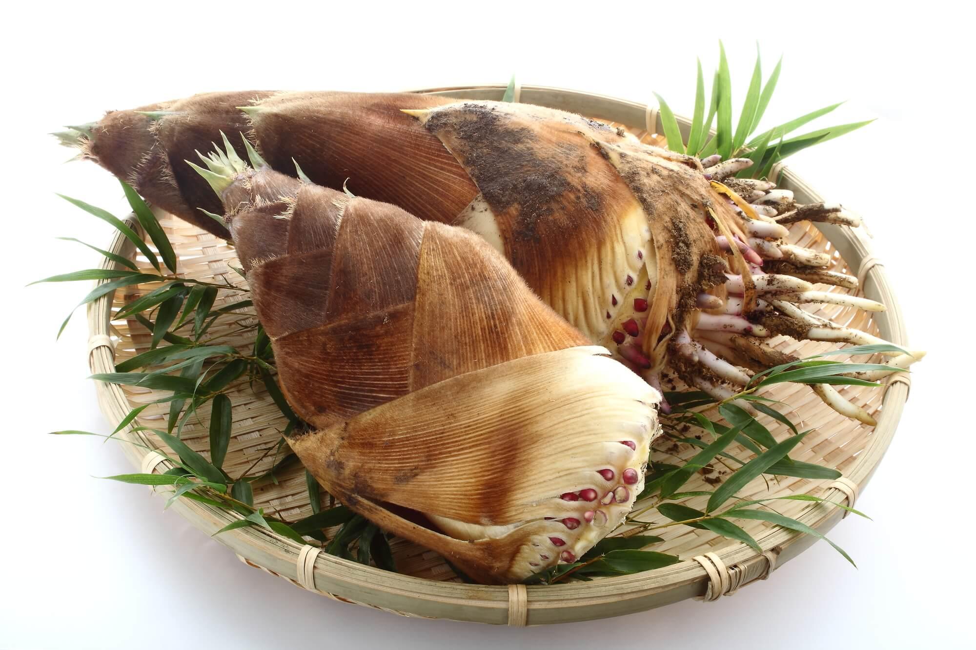 旬の食材を長く楽しむ!竹の子の長期保存にはクエン酸